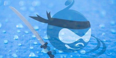 Drupal raindrop